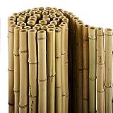 casa pura® Bambus Sichtschutz | Bambusmatte in Premiumqualität, Massive Bambusrohre |...