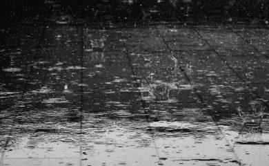 Gassi-bei-Wind-und-Wetter