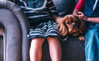 Kinder-mit-Hund-gassi