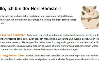 Hamster-How-To-für-Kids