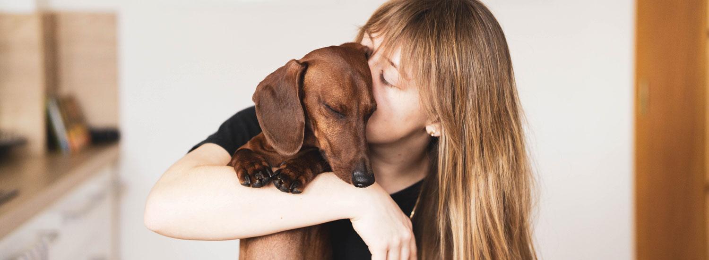 Tierarzt-gehen-üben